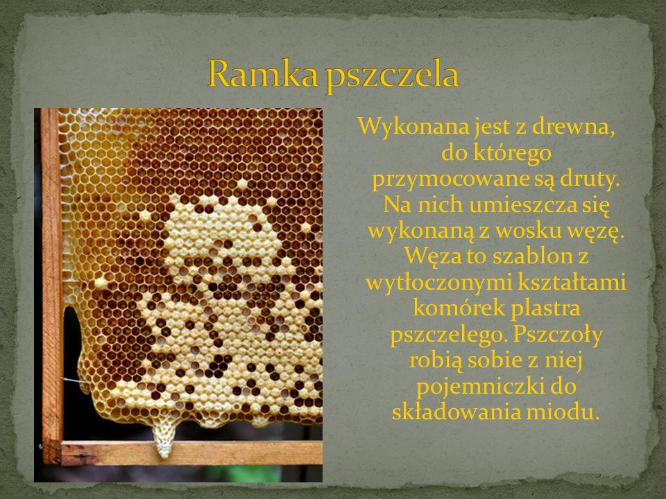 Ramka pszczela