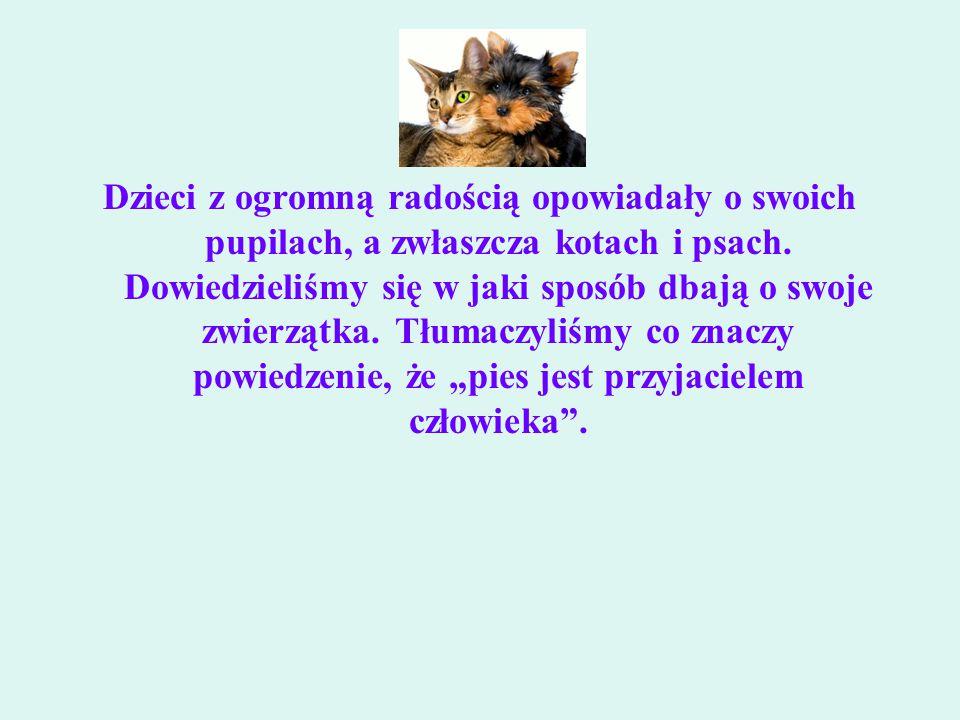 Dzieci z ogromną radością opowiadały o swoich pupilach, a zwłaszcza kotach i psach.