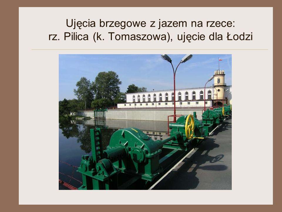 Ujęcia brzegowe z jazem na rzece: rz. Pilica (k