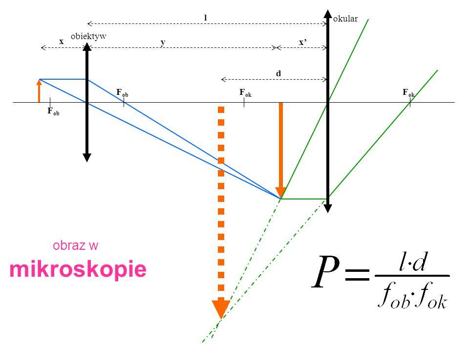 Fob Fok l okular obiektyw x' x y d obraz w mikroskopie