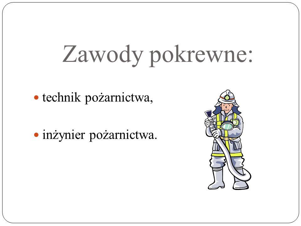 Zawody pokrewne: technik pożarnictwa, inżynier pożarnictwa.