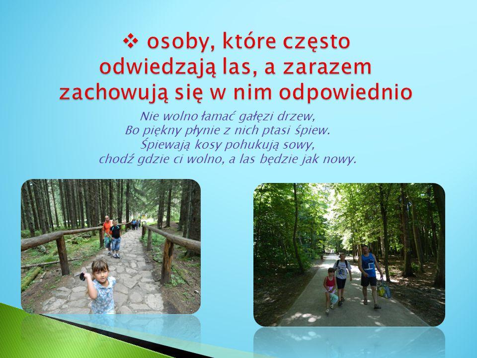 osoby, które często odwiedzają las, a zarazem zachowują się w nim odpowiednio