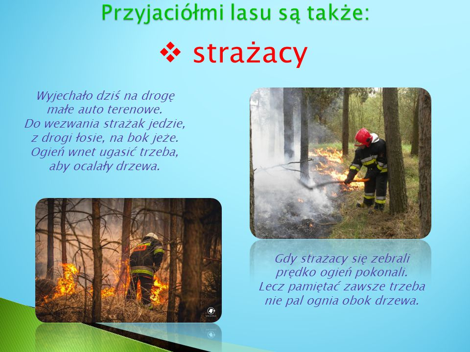 Przyjaciółmi lasu są także:
