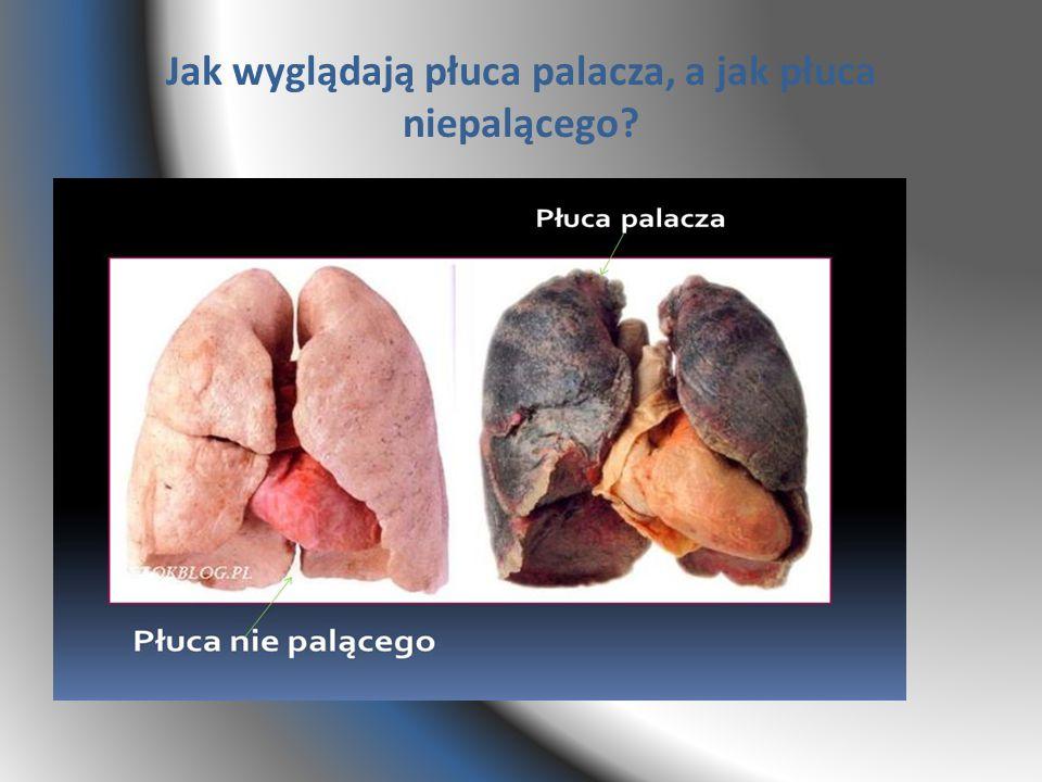 Jak wyglądają płuca palacza, a jak płuca niepalącego