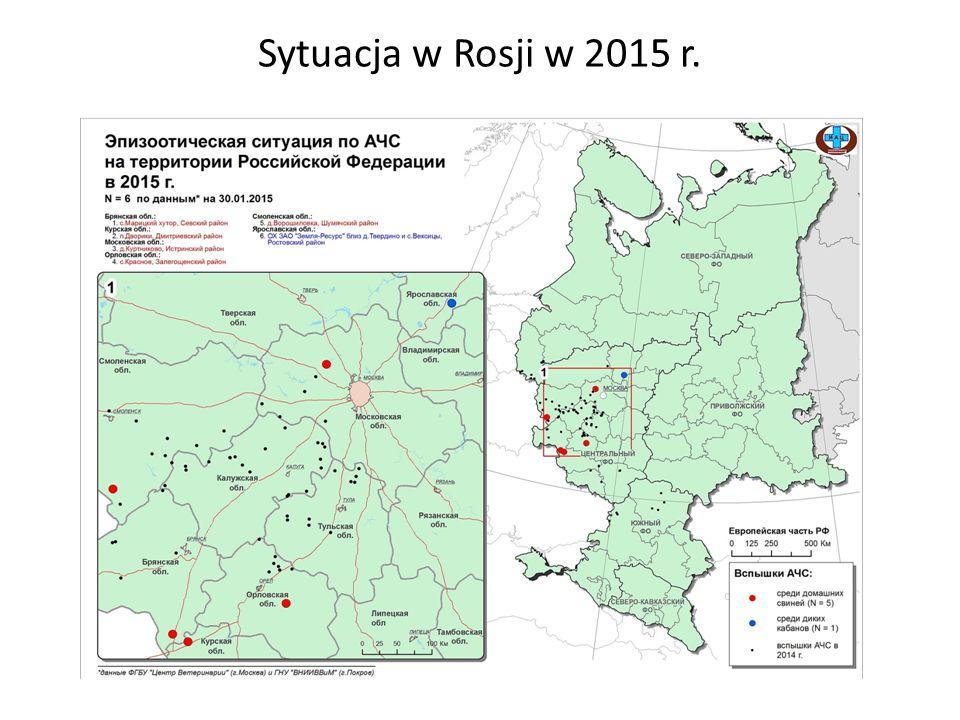 Sytuacja w Rosji w 2015 r.