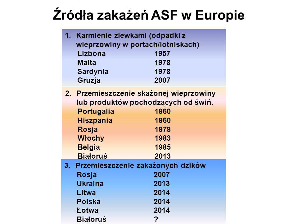 Źródła zakażeń ASF w Europie
