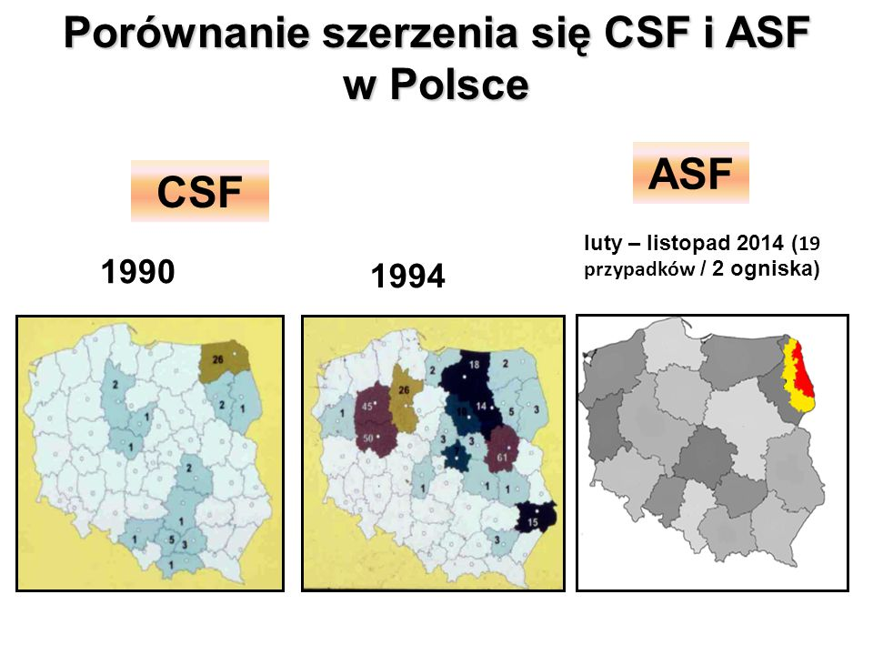 Porównanie szerzenia się CSF i ASF w Polsce