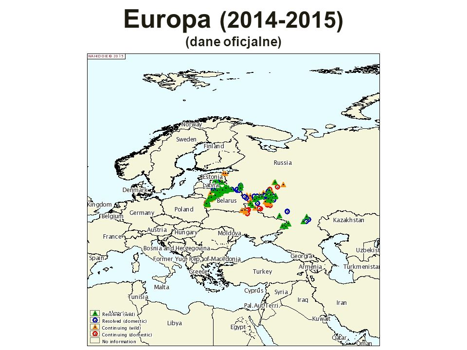 Europa (2014-2015) (dane oficjalne)