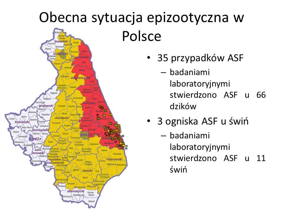 Obecna sytuacja epizootyczna w Polsce