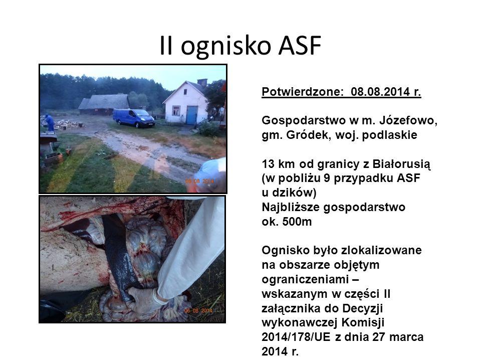 II ognisko ASF Potwierdzone: 08.08.2014 r. Gospodarstwo w m. Józefowo,