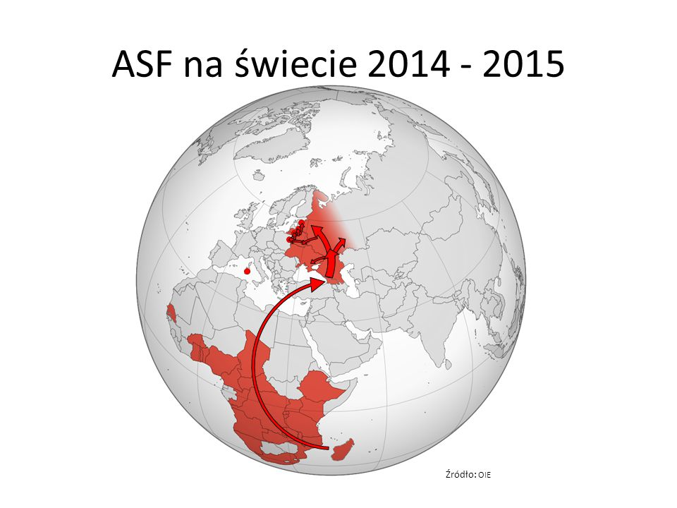 ASF na świecie 2014 - 2015 Źródło: OIE