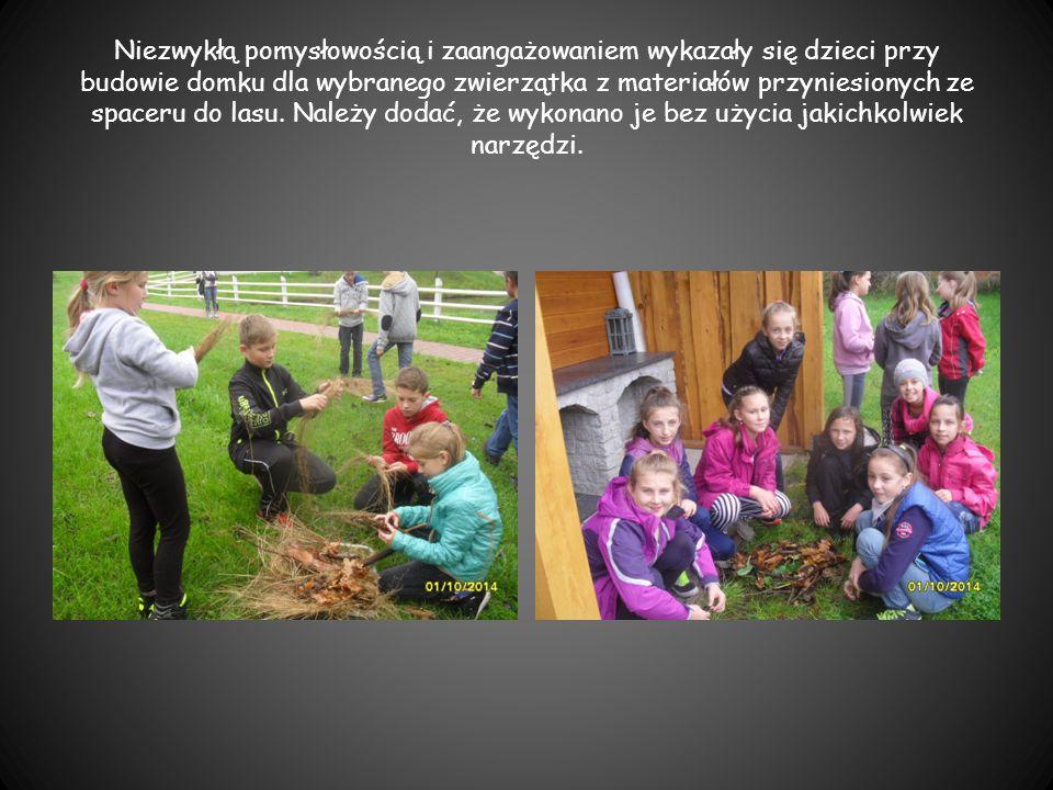 Niezwykłą pomysłowością i zaangażowaniem wykazały się dzieci przy budowie domku dla wybranego zwierzątka z materiałów przyniesionych ze spaceru do lasu.