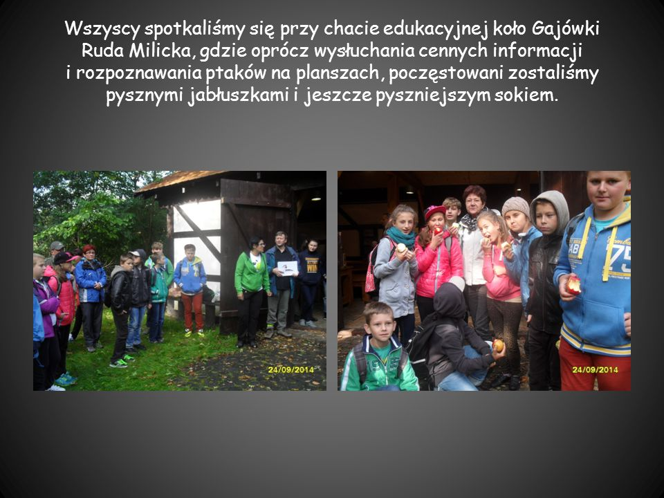 Wszyscy spotkaliśmy się przy chacie edukacyjnej koło Gajówki Ruda Milicka, gdzie oprócz wysłuchania cennych informacji i rozpoznawania ptaków na planszach, poczęstowani zostaliśmy pysznymi jabłuszkami i jeszcze pyszniejszym sokiem.