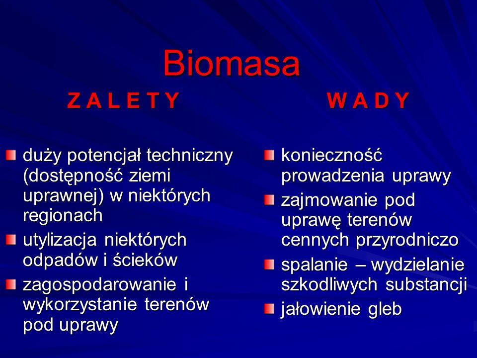 Biomasa Z A L E T Y. duży potencjał techniczny (dostępność ziemi uprawnej) w niektórych regionach.