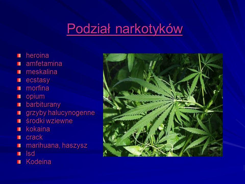 Podział narkotyków heroina amfetamina meskalina ecstasy morfina opium