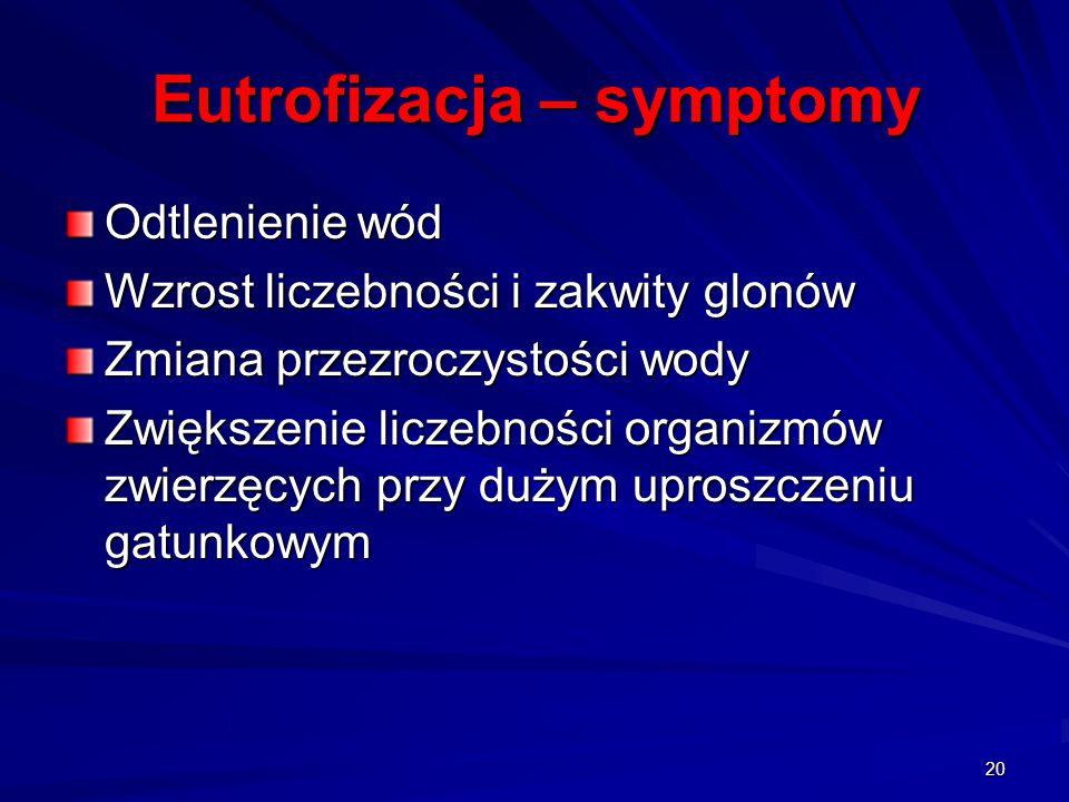 Eutrofizacja – symptomy