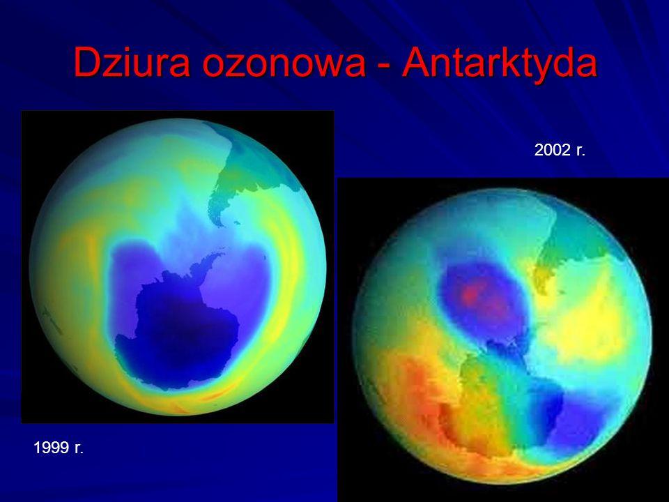Dziura ozonowa - Antarktyda
