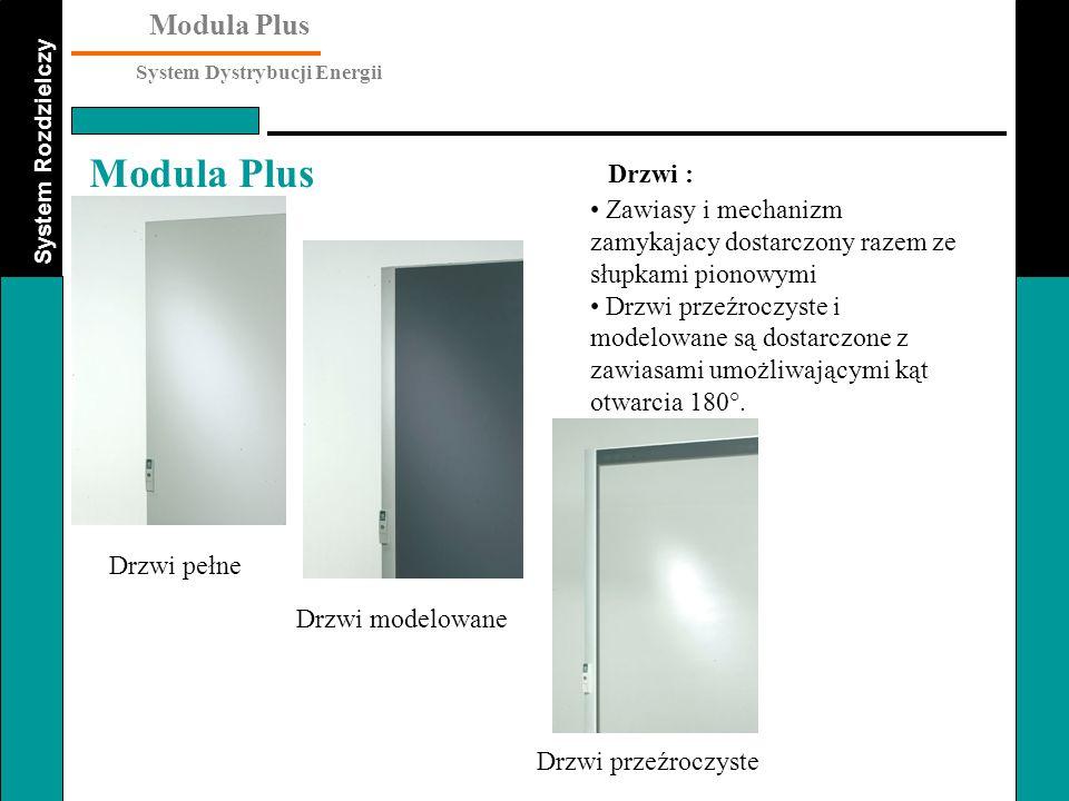 Drzwi : Zawiasy i mechanizm zamykajacy dostarczony razem ze słupkami pionowymi.