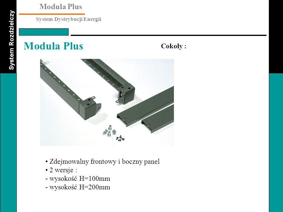 Cokoły : Zdejmowalny frontowy i boczny panel 2 wersje : - wysokość H=100mm - wysokość H=200mm