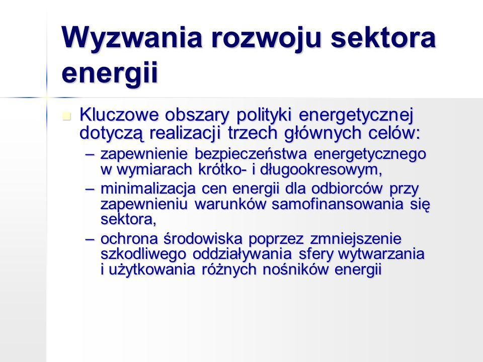 Wyzwania rozwoju sektora energii
