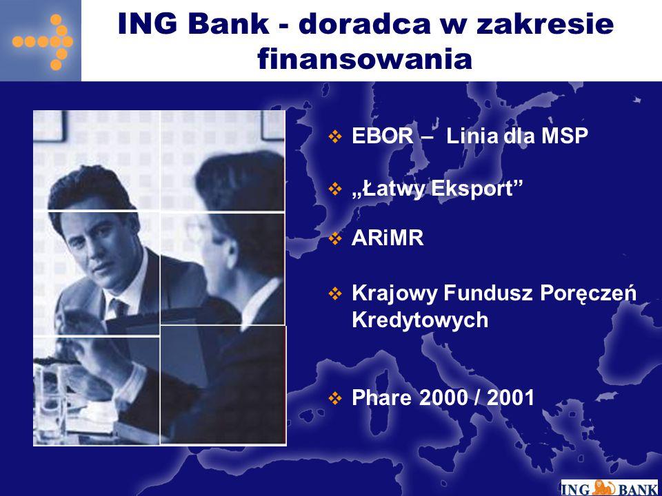 ING Bank - doradca w zakresie finansowania