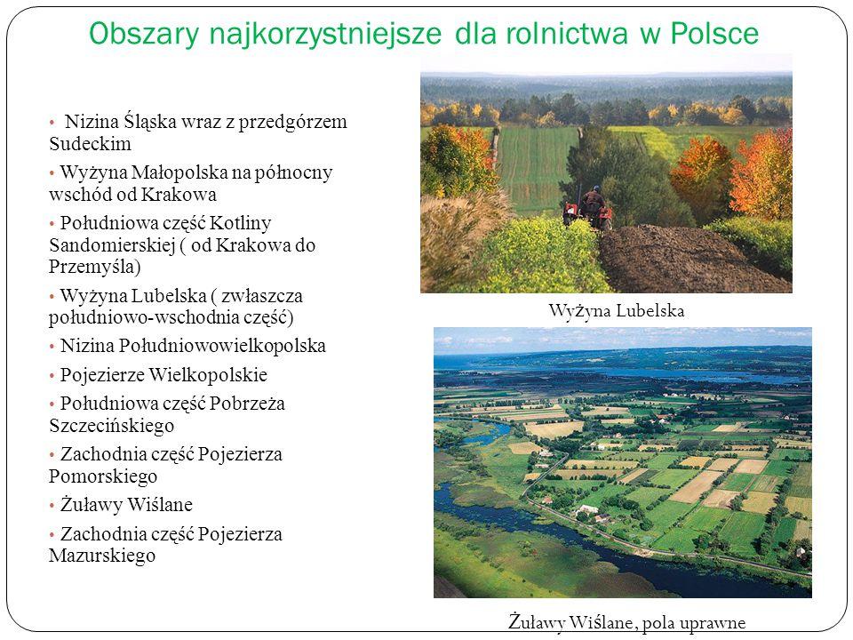 Obszary najkorzystniejsze dla rolnictwa w Polsce