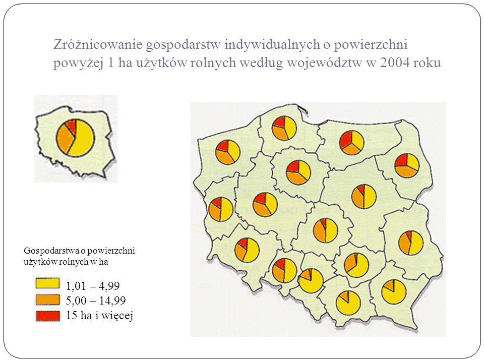 Zróżnicowanie gospodarstw indywidualnych o powierzchni powyżej 1 ha użytków rolnych według województw w 2004 roku