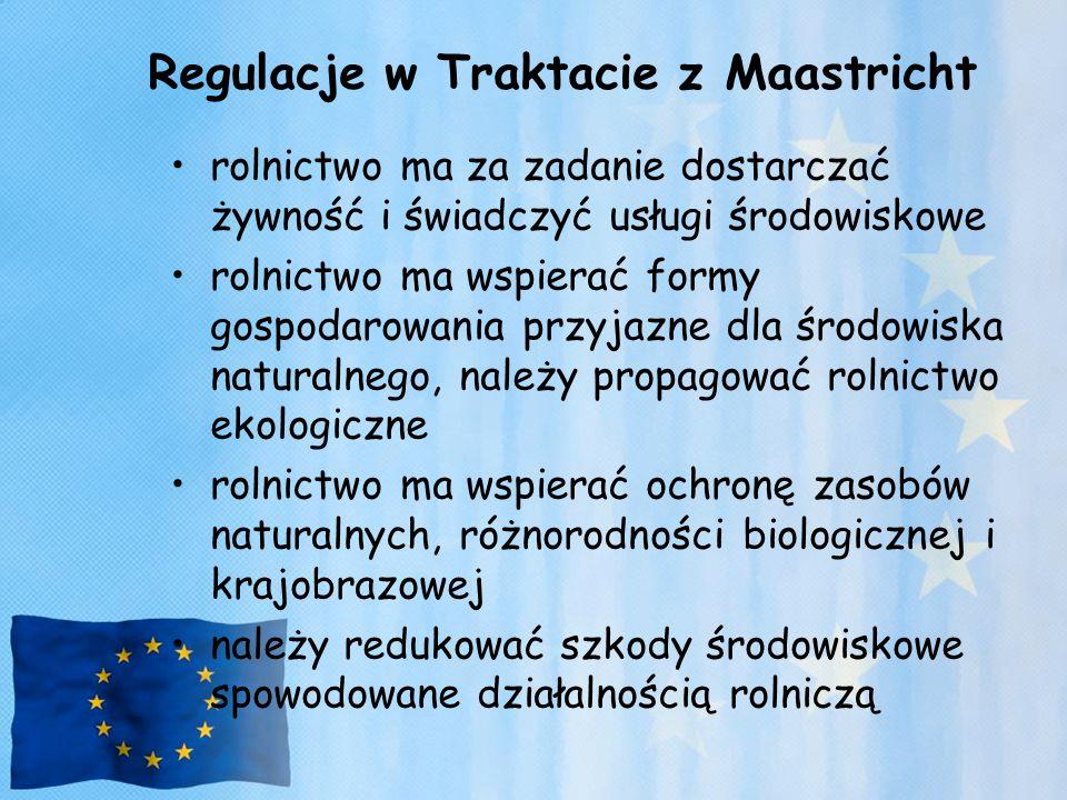 Regulacje w Traktacie z Maastricht
