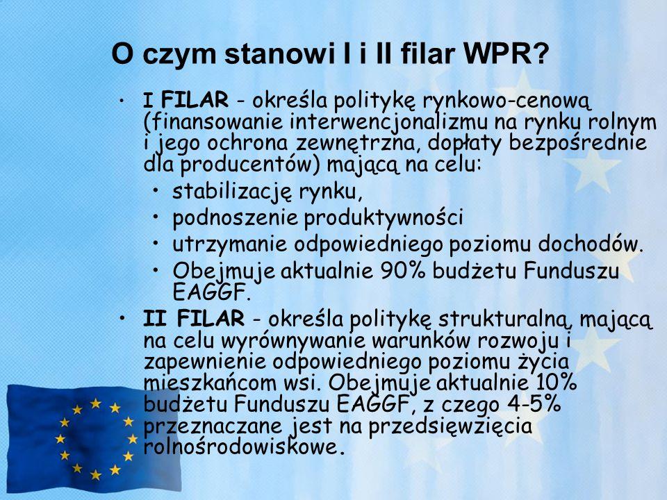 O czym stanowi I i II filar WPR
