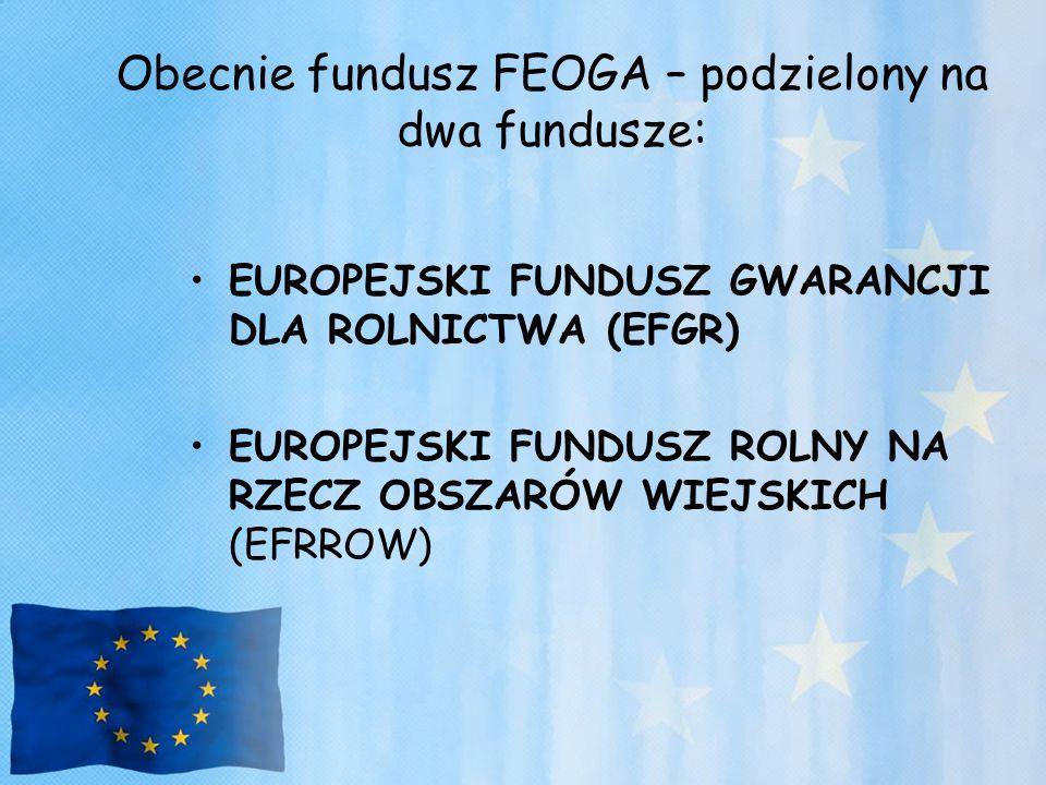 Obecnie fundusz FEOGA – podzielony na dwa fundusze: