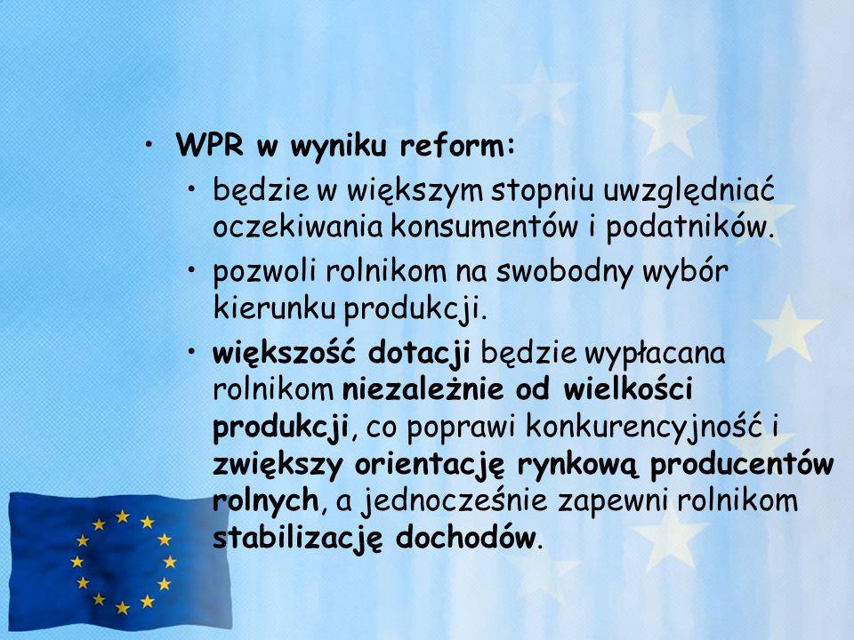 WPR w wyniku reform: będzie w większym stopniu uwzględniać oczekiwania konsumentów i podatników.