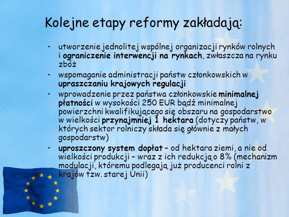 Kolejne etapy reformy zakładają: