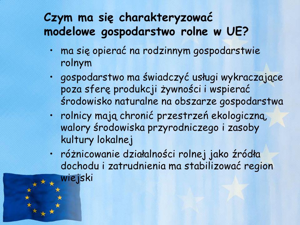 Czym ma się charakteryzować modelowe gospodarstwo rolne w UE