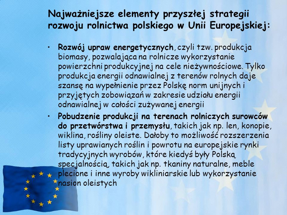 Najważniejsze elementy przyszłej strategii rozwoju rolnictwa polskiego w Unii Europejskiej: