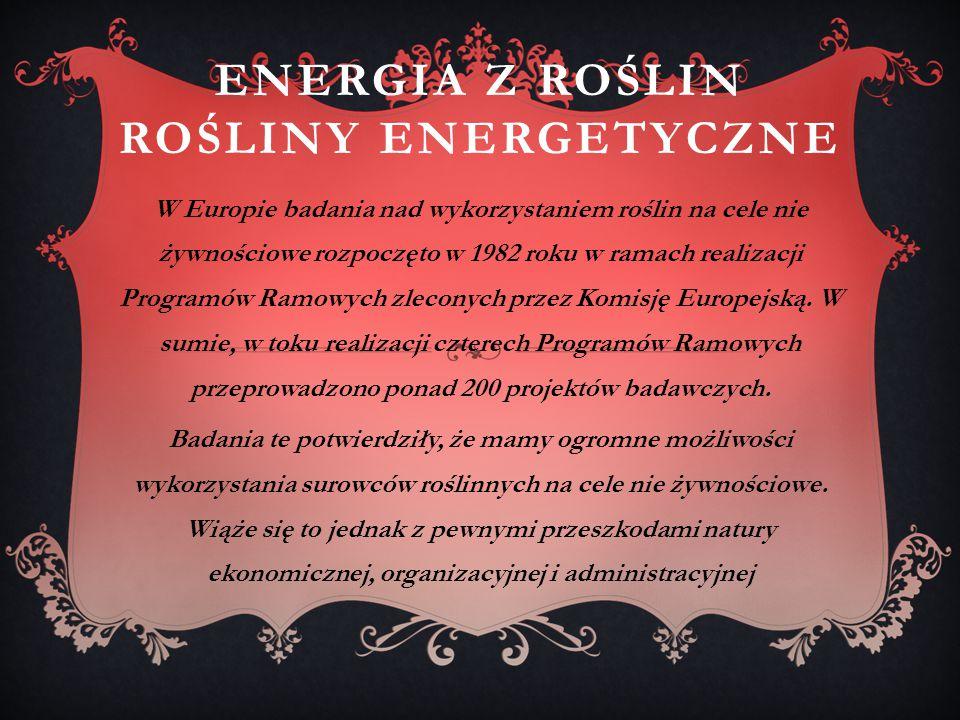 ENERGIA Z ROŚLIN ROŚLINY ENERGETYCZNE