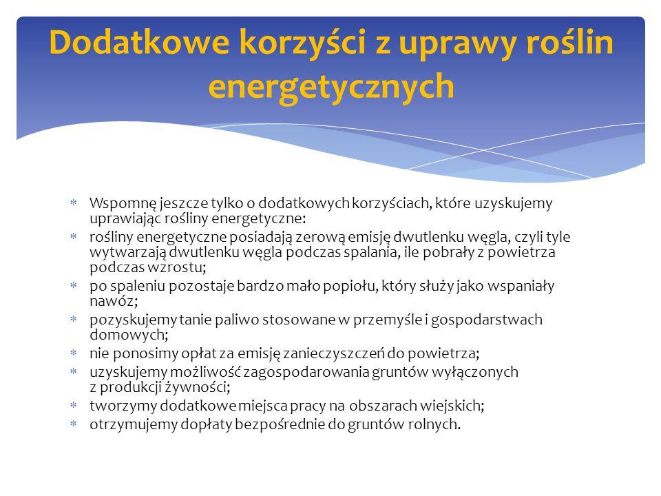 Dodatkowe korzyści z uprawy roślin energetycznych