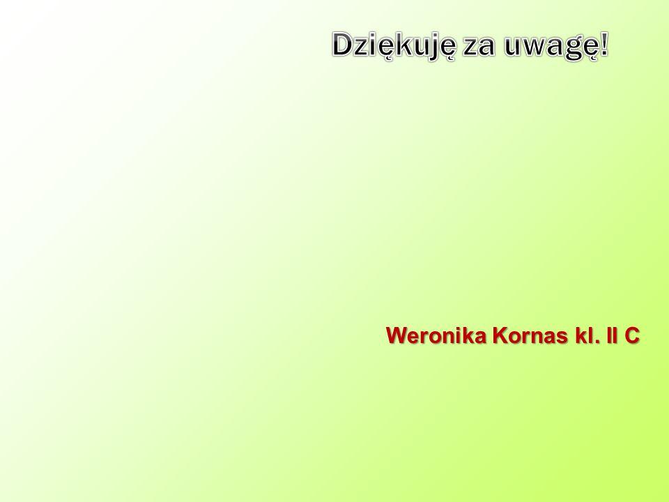 Dziękuję za uwagę! Weronika Kornas kl. II C