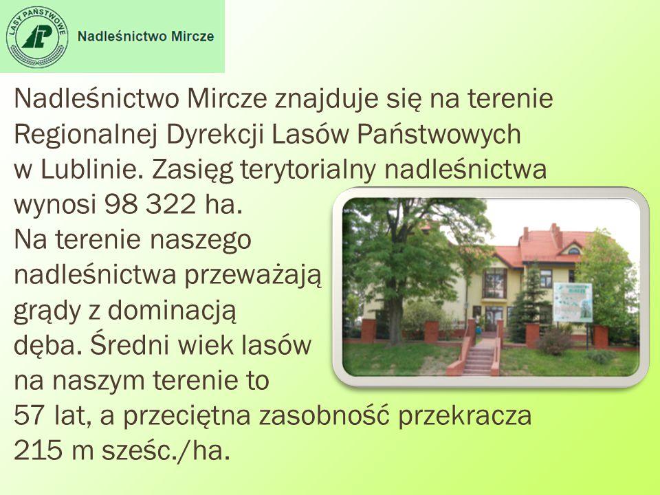 Nadleśnictwo Mircze znajduje się na terenie Regionalnej Dyrekcji Lasów Państwowych w Lublinie.