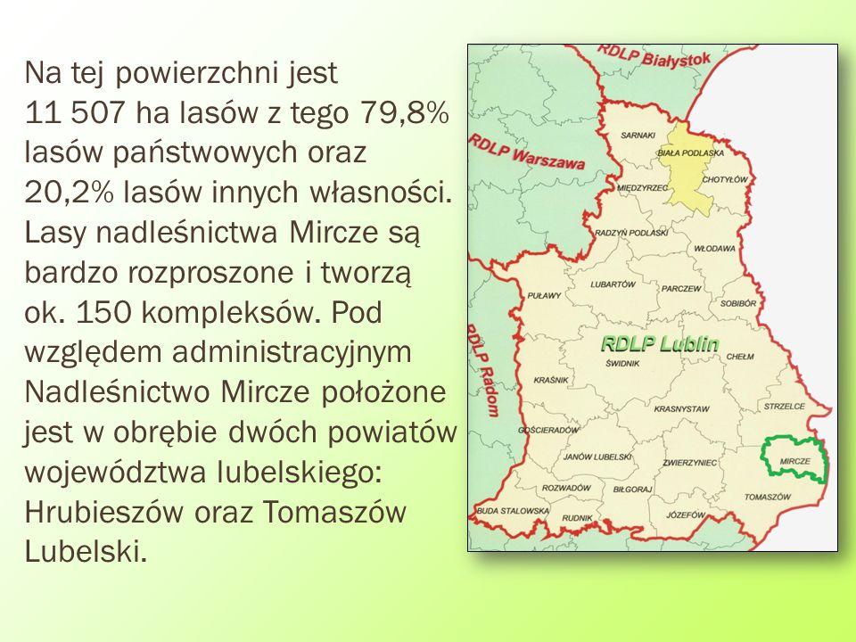 Na tej powierzchni jest 11 507 ha lasów z tego 79,8% lasów państwowych oraz 20,2% lasów innych własności.