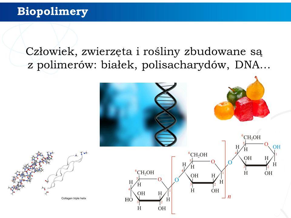 Biopolimery Człowiek, zwierzęta i rośliny zbudowane są z polimerów: białek, polisacharydów, DNA…
