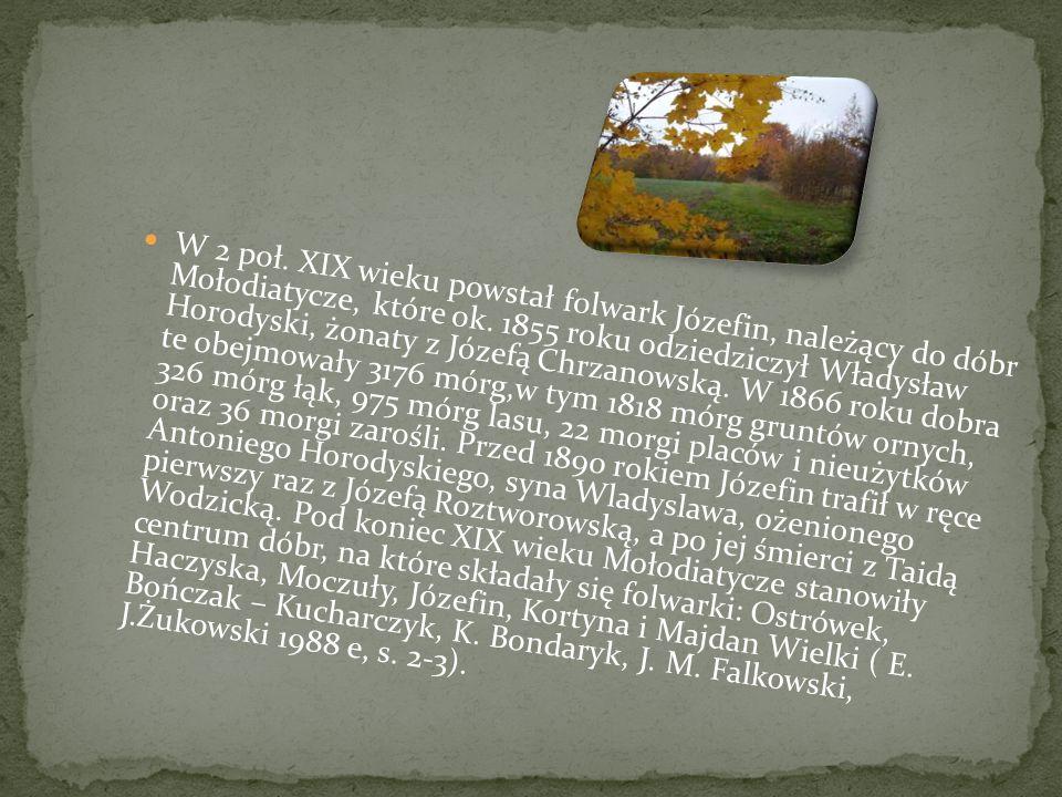 W 2 poł. XIX wieku powstał folwark Józefin, należący do dóbr Mołodiatycze, które ok.