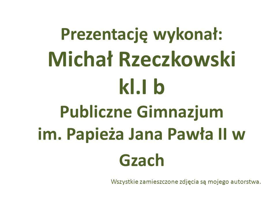 Publiczne Gimnazjum im. Papieża Jana Pawła II w Gzach