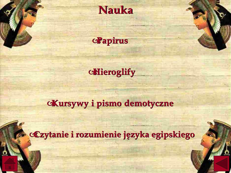 Nauka Papirus Hieroglify Kursywy i pismo demotyczne
