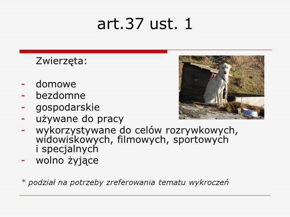 art.37 ust. 1 Zwierzęta: domowe bezdomne gospodarskie używane do pracy