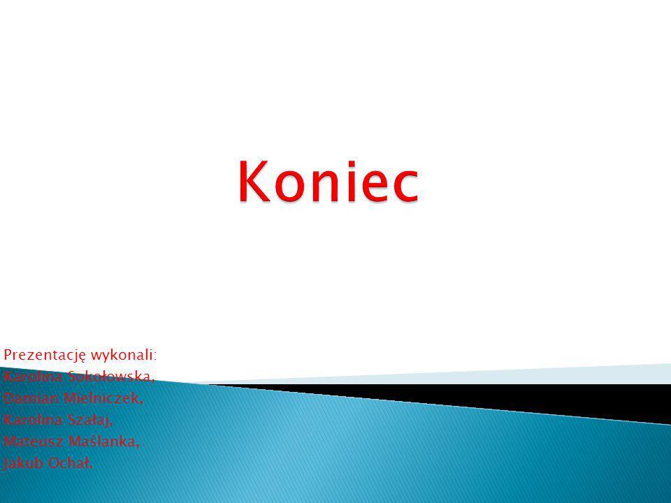 Koniec Prezentację wykonali: Karolina Sokołowska, Damian Mielniczek,