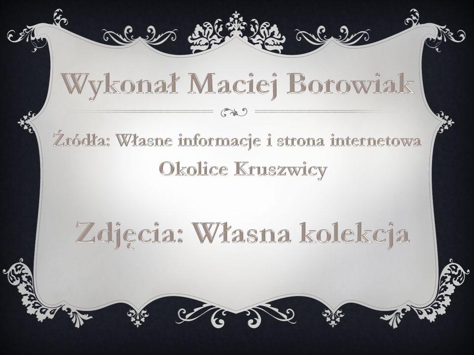 Wykonał Maciej Borowiak Zdjęcia: Własna kolekcja