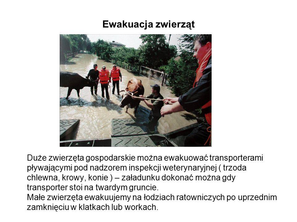 Ewakuacja zwierząt