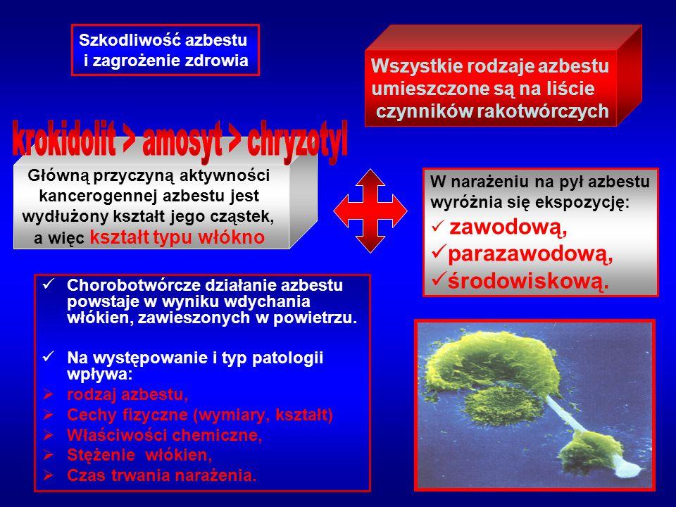 parazawodową, środowiskową. Wszystkie rodzaje azbestu