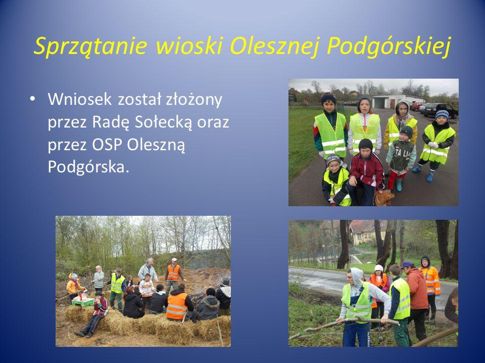 Sprzątanie wioski Olesznej Podgórskiej