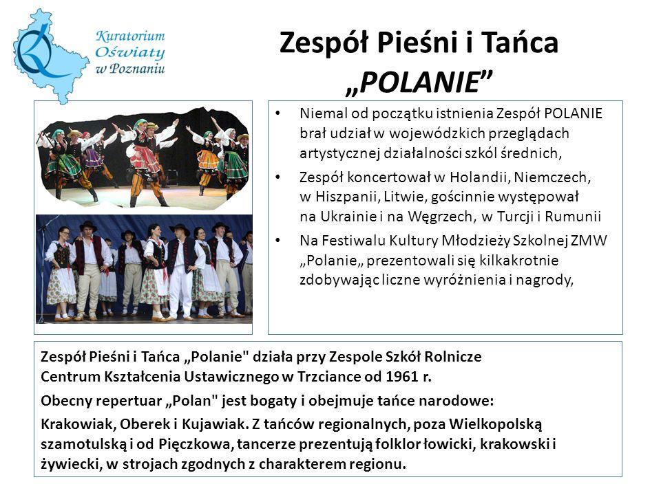 """Zespół Pieśni i Tańca """"POLANIE"""